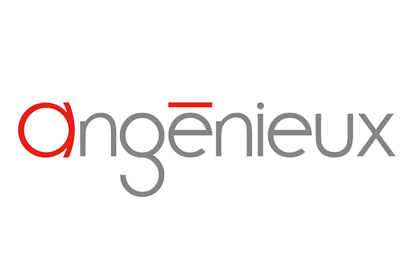 angenieux_600x400.png